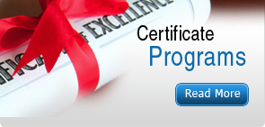 Professional Certificate Programs